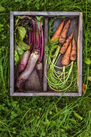 Legumes circuit court auberge eygliers hautes alpes